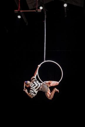 aerial-hoop-2441849_1920
